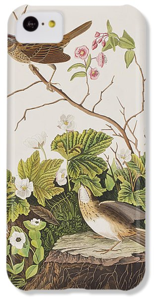 Lincoln Finch IPhone 5c Case by John James Audubon