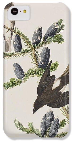 Olive Sided Flycatcher IPhone 5c Case by John James Audubon