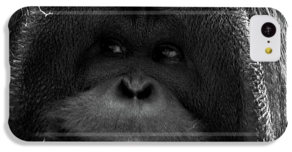 Orangutan IPhone 5c Case by Martin Newman