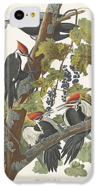 Pileated Woodpecker IPhone 5c Case by John James Audubon