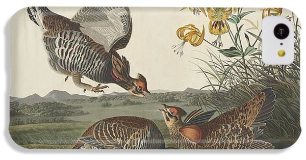 Pinnated Grouse IPhone 5c Case by John James Audubon