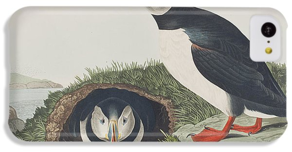Puffin IPhone 5c Case by John James Audubon