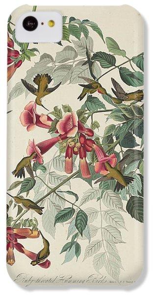 Ruby-throated Hummingbird IPhone 5c Case by John James Audubon