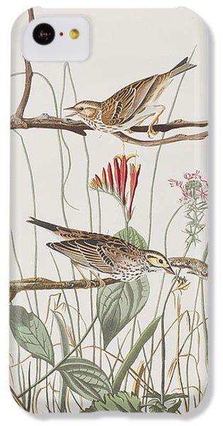 Savannah Finch IPhone 5c Case by John James Audubon