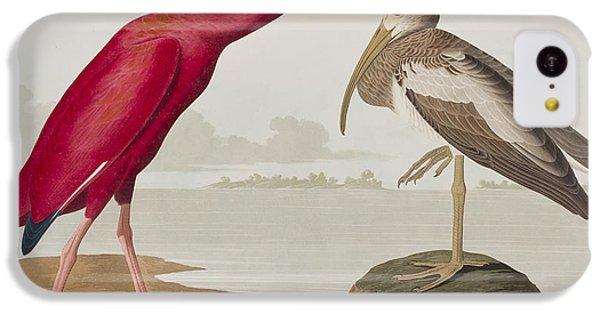 Scarlet Ibis IPhone 5c Case by John James Audubon