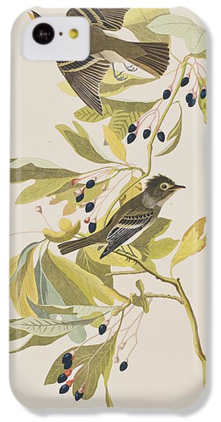 Small Green Crested Flycatcher IPhone 5c Case by John James Audubon