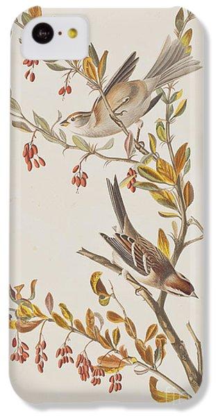 Tree Sparrow IPhone 5c Case by John James Audubon