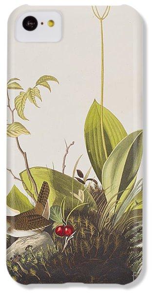 Wood Wren IPhone 5c Case by John James Audubon