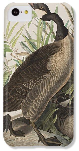 Canada Goose IPhone 5c Case by John James Audubon