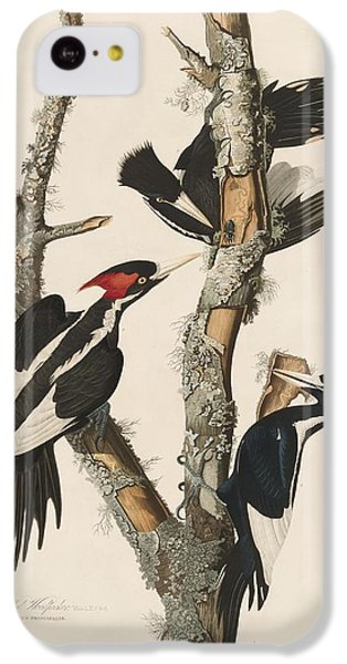 Ivory-billed Woodpecker IPhone 5c Case by John James Audubon