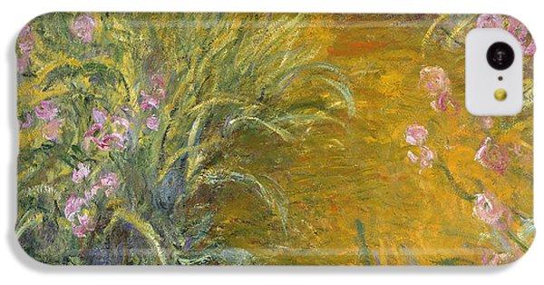 The Path Through The Irises IPhone 5c Case by Claude Monet