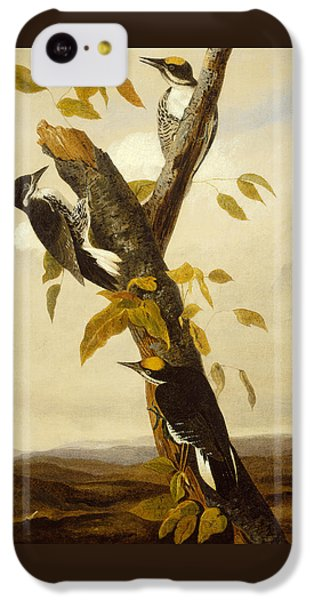 Woodpeckers IPhone 5c Case by John James Audubon