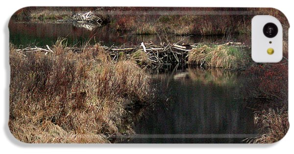 A Beaver's Work IPhone 5c Case by Skip Willits