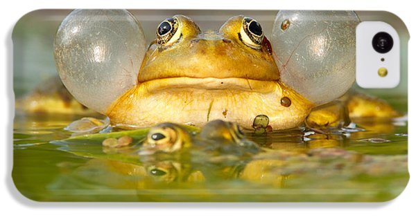 A Frog's Life IPhone 5c Case by Roeselien Raimond