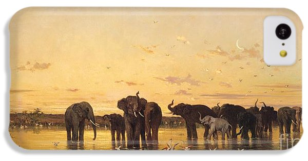 African Elephants IPhone 5c Case by Charles Emile de Tournemine
