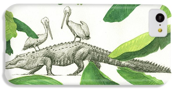 Alligator With Pelicans IPhone 5c Case by Juan Bosco
