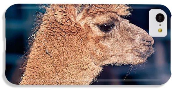 Alpaca Wants To Meet You IPhone 5c Case by TC Morgan