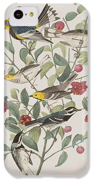 Audubons Warbler Hermit Warbler Black-throated Gray Warbler IPhone 5c Case by John James Audubon