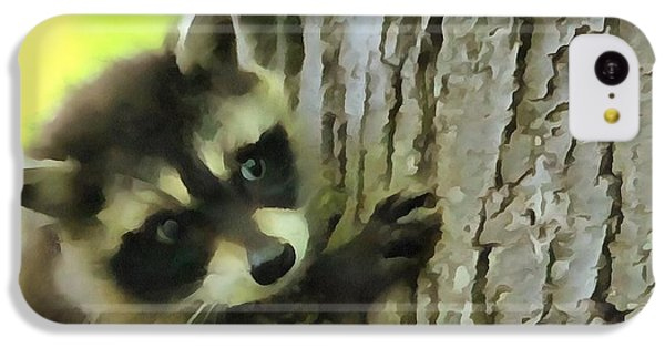 Baby Raccoon In A Tree IPhone 5c Case by Dan Sproul