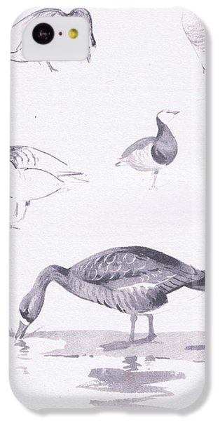 Barnacle And White Fronted Geese IPhone 5c Case by Archibald Thorburn