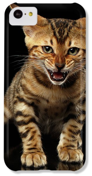 Bengal Kitty Stands And Hissing On Black IPhone 5c Case by Sergey Taran