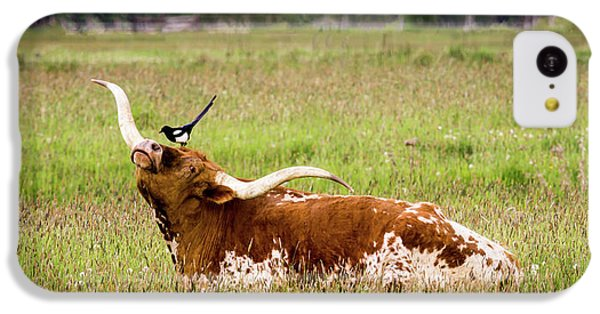 Best Friends - Texas Longhorn Magpie IPhone 5c Case by TL Mair
