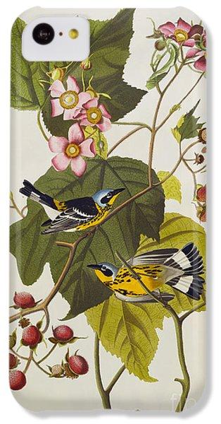 Black And Yellow Warbler IPhone 5c Case by John James Audubon