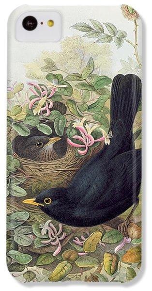 Blackbird,  IPhone 5c Case by John Gould