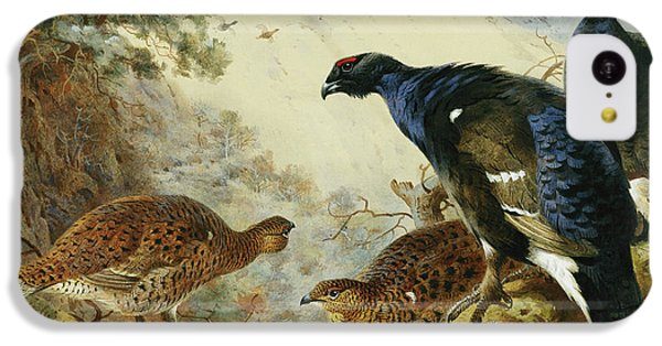 Blackgame Or Black Grouse IPhone 5c Case by Archibald Thorburn