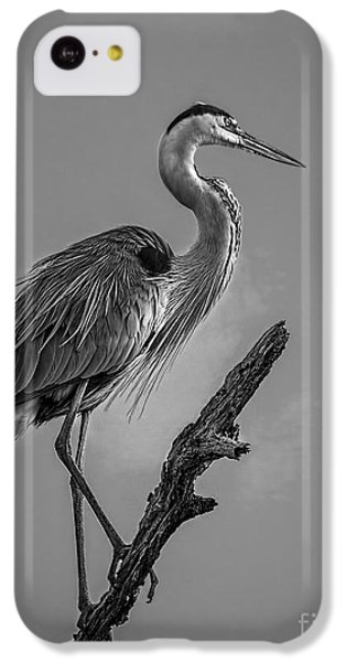 Blue In Black-bw IPhone 5c Case by Marvin Spates