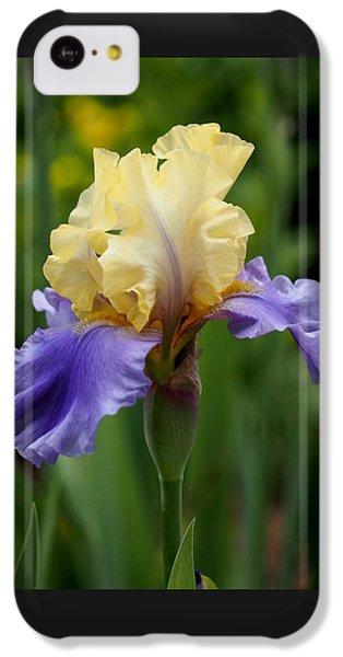 Blue Yellow Iris Germanica IPhone 5c Case by Rona Black