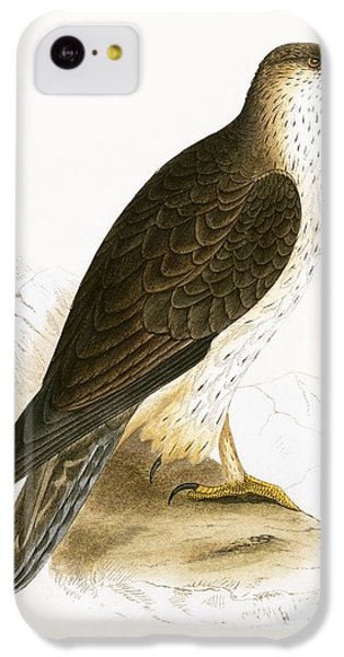 Bonelli's Eagle IPhone 5c Case by English School