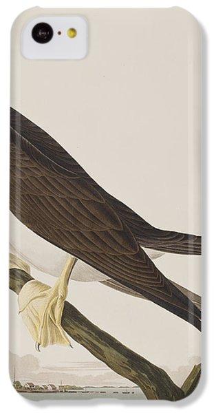 Booby Gannet   IPhone 5c Case by John James Audubon