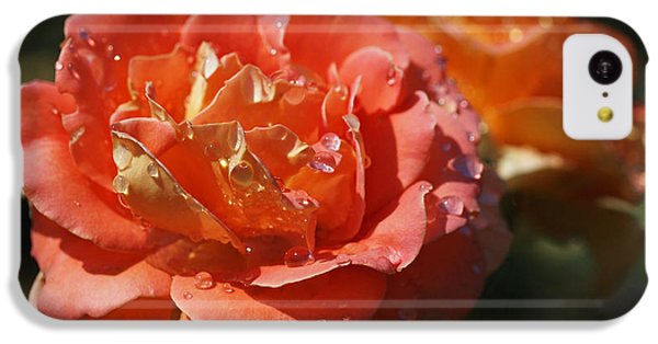 Brass Band Roses IPhone 5c Case by Rona Black