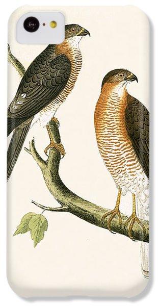 Calcutta Sparrow Hawk IPhone 5c Case by English School