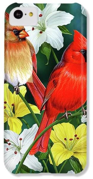 Cardinal Day 2 IPhone 5c Case by JQ Licensing