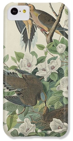 Carolina Pigeon Or Turtle Dove IPhone 5c Case by John James Audubon