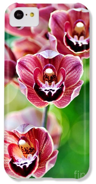 Cascading Miniature Orchids IPhone 5c Case by Kaye Menner