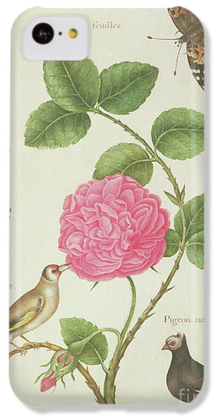 Centifolia Rose, Lavender, Tortoiseshell Butterfly, Goldfinch And Crested Pigeon IPhone 5c Case by Nicolas Robert