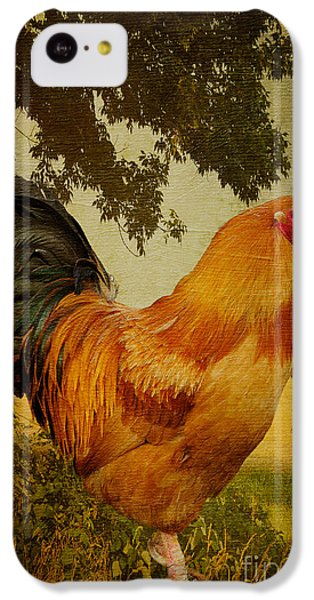 Chanticleer IPhone 5c Case by Lois Bryan