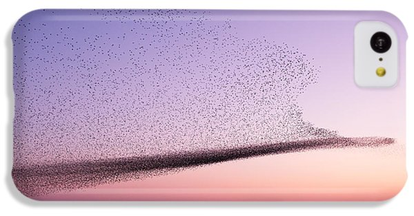 Chaos In Motion - Starling Murmuration IPhone 5c Case by Roeselien Raimond