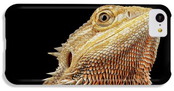 Closeup Head Of Bearded Dragon Llizard, Agama, Isolated Black Background IPhone 5c Case by Sergey Taran