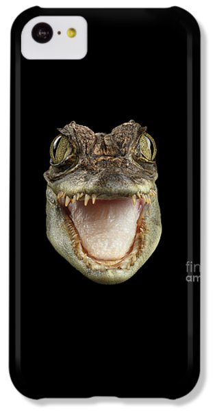 Closeup Head Of Young Cayman Crocodile , Reptile With Opened Mouth Isolated On Black Background, Fro IPhone 5c Case by Sergey Taran