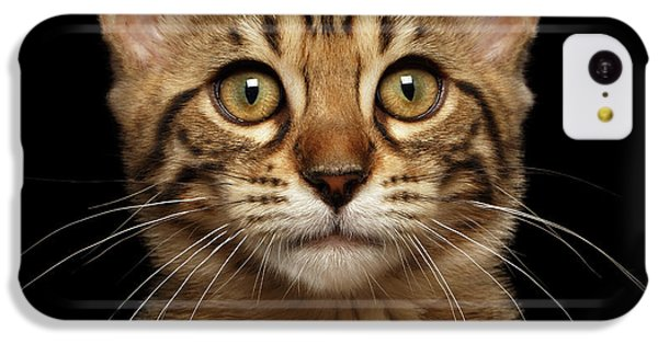 Closeup Portrait Of Bengal Kitty Isolated Black Background IPhone 5c Case by Sergey Taran
