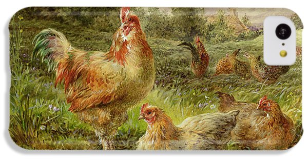 Cochin China Fowls IPhone 5c Case by George Hickin