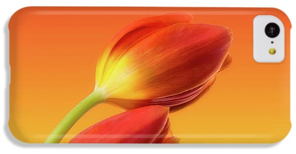 Colorful Tulips IPhone 5c Case by Wim Lanclus
