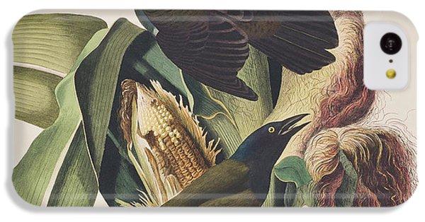 Common Crow IPhone 5c Case by John James Audubon