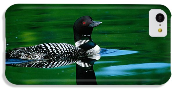 Common Loon In Water, Michigan, Usa IPhone 5c Case by Panoramic Images
