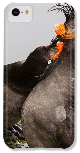 Crested Auklets IPhone 5c Case by Sunil Gopalan