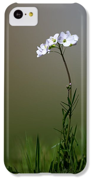 Cuckoo Flower IPhone 5c Case by Ian Hufton